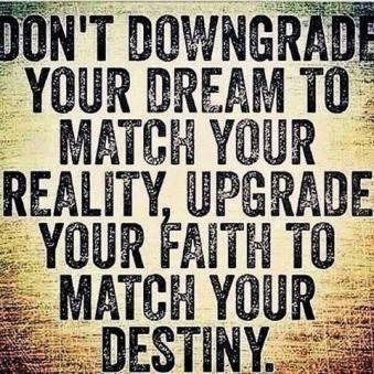 DONT DOWNGRADE DREAM